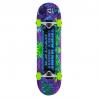Značkový, snadno ovladatelný skateboard pro všechny kategorie jezdců. Určen pro jízdu ve skateparku a pro provádění všech běžných triků.