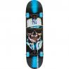 Značkový, snadno ovladatelný skateboard pro všechny kategorie jezdců. Určen pro jízdu ve skateparku a pro provádění všech běžných triků. Délka desky 80 cm, šířka desky 20,3 cm. Trucky Speed Demons. Hmotnost skateboardu: 2284 g Obrázky jsou ilustrativní, nalepený griptape je jednobarevný, bez potisku.
