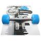 "Skateboard NILS EXTREME SPEED 31""|79cm"